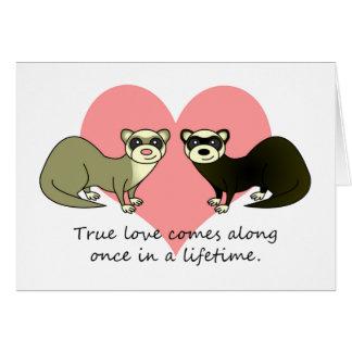 Cartes Les furets mignons rectifient l'amour