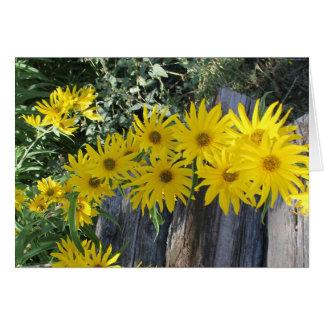 """Cartes Les hierbas d'en MI de Flores """"fleurit dans mes"""