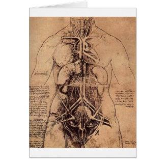 Cartes Les organes de principe et vasculaire et