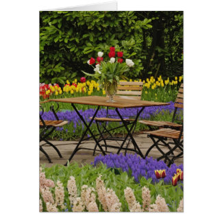 Cartes Les tulipes de la table dans le jardin, Keukenhof