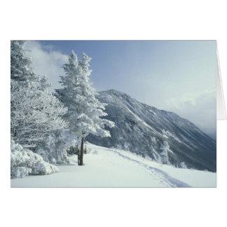 Cartes Les USA, NH, neige ont couvert des traînées