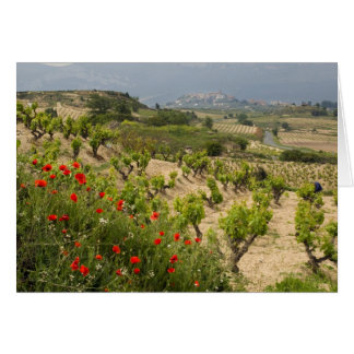 Cartes Les vignobles s'approchent de Laguardia, capitale