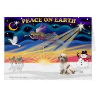 Cartes Lever de soleil de Noël - Terrier tibétain (BrnW)