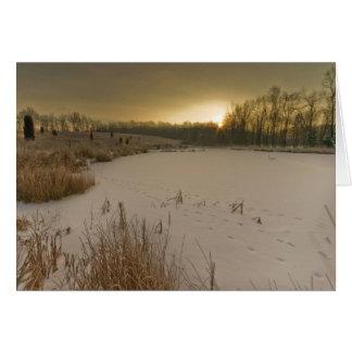 Cartes Lever de soleil d'hiver de Gorman