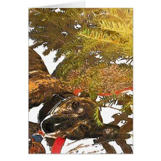 Cartes Lévrier sous l'arbre de Noël
