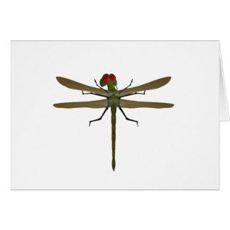 Cartes Libellules de libellule