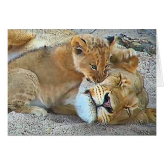 Cartes Lionne et petit animal