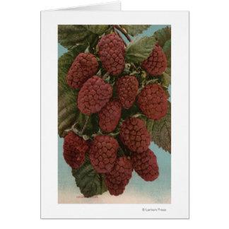 Cartes Lithographie de Chromo de fruit de