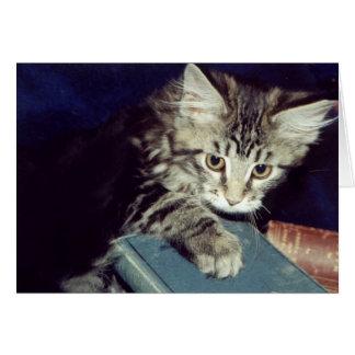 Cartes Livres et chats