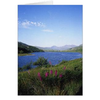 Cartes Loch écossais