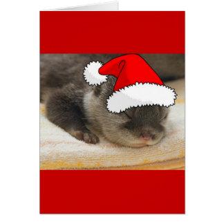 Cartes Loutre de Noël