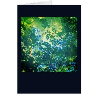 Cartes lumière par des arbres