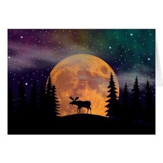 Cartes Lumières du nord de nuits du nord