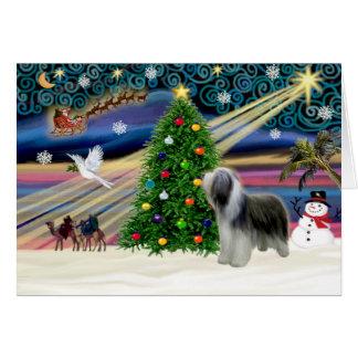 Cartes Magie-Beardie-support de Noël