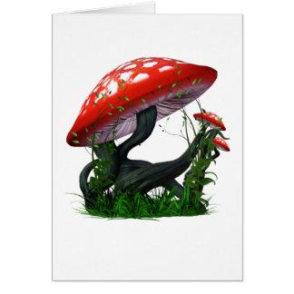 Cartes Magie de champignon
