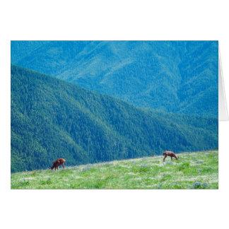 Cartes Mâles par les montagnes