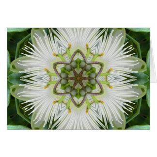 Cartes Mandala de fleur de passion