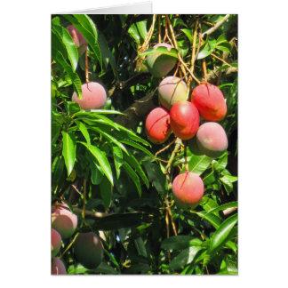 Cartes Mangues hawaïennes