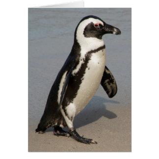 Cartes Marche africaine de pingouin