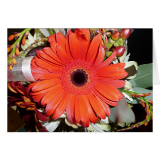 Cartes Marguerite orange de Gerber