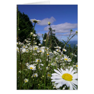 Cartes Marguerites 01