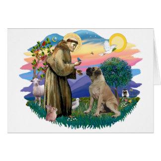 Cartes Mastiff de Taureau