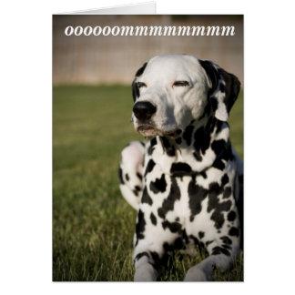 Cartes Méditation dalmatienne