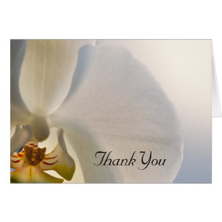 Cartes Merci blanc d'élégance d'orchidée