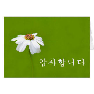 Cartes Merci dans le Coréen - marguerite blanche