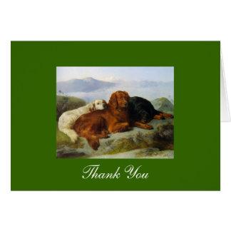 Cartes Merci de golden retriever, d'Irlandais et de