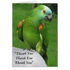 Cartes Merci de perroquet