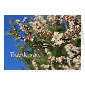 Cartes Merci de printemps