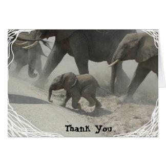 Cartes Merci -   éléphant africain