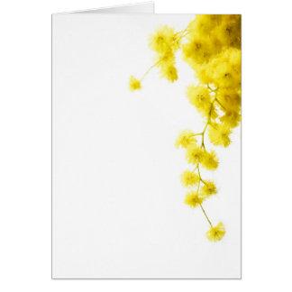 Cartes Mimosa
