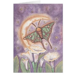 Cartes Mite et Moonflowers