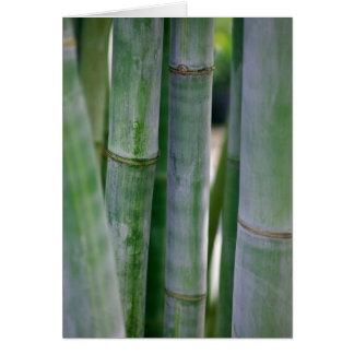 Cartes Modèle customisé par arrière - plan en bambou