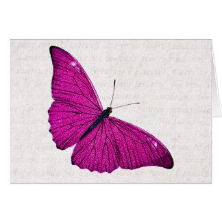 Cartes Modèle fuchsia de papillon de roses indien de