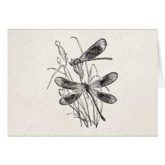 Cartes Modèle personnalisé par libellule vintage de