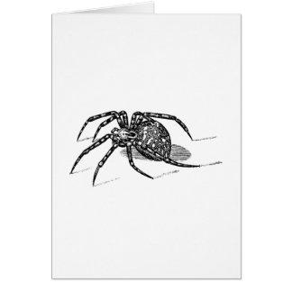 Cartes Modèle vintage d'araignées d'illustration