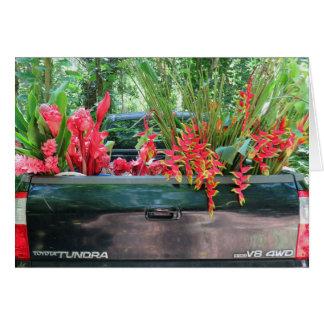Cartes Moisson de Tropicals hawaïen