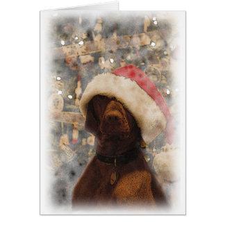 Cartes Mon Joyeux Noël Vizsla