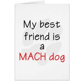 Cartes Mon meilleur ami est un chien de MACH