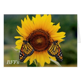 Cartes Monarque Butterfies sur le tournesol