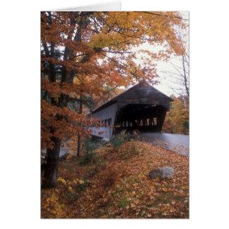 Cartes Montagnes de blanc de pont couvert d'Albany