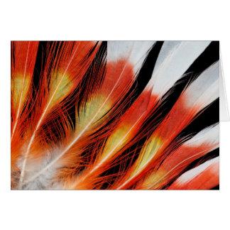 Cartes Motif de plume de cacatoès