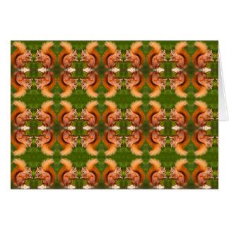 Cartes Motif d'écureuil rouge