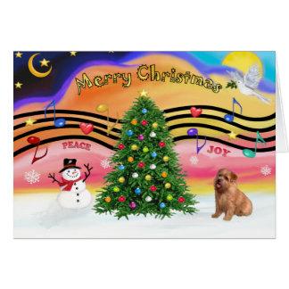 Cartes Musique 2 de Noël - la Norfolk Terrier