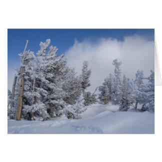 Cartes Neige fraîche sur Mammoth Mountain