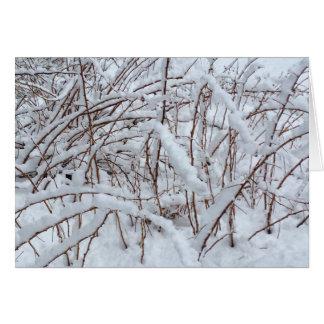 Cartes Neige sur une correction de framboise ---