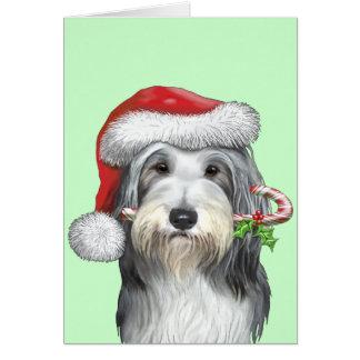 Cartes Noël avec le jazz le colley barbu